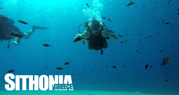 Learn to dive in Sithonia